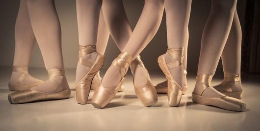 Ballettsko og EU